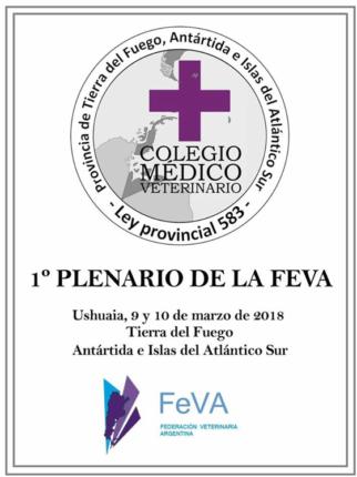 1er plenario FeVA